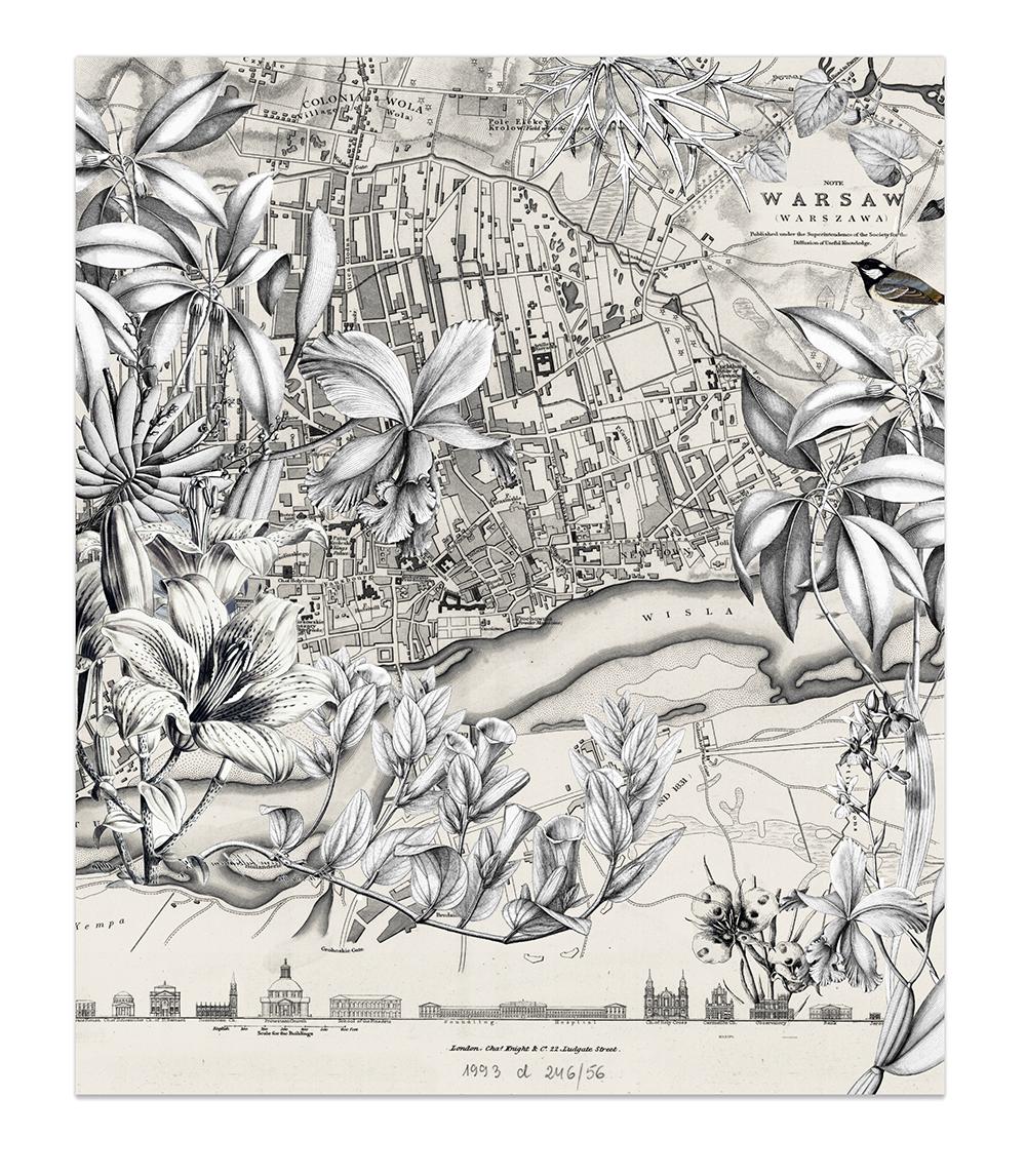 Mapy i kwiaty