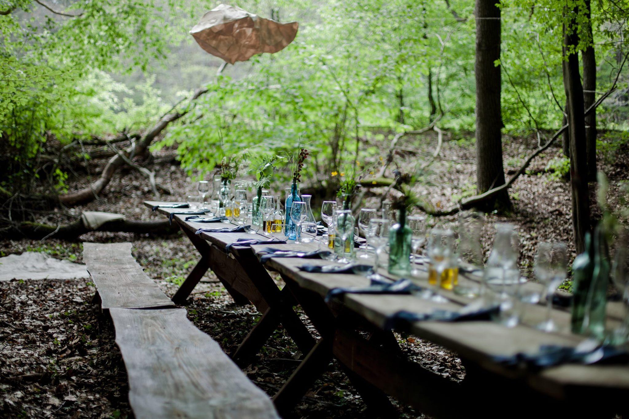 Do lasu na kolację